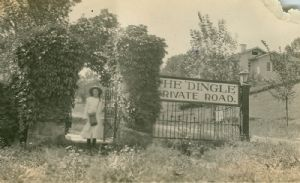 The Dingle