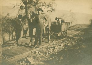 Coal car being pulled by horse.