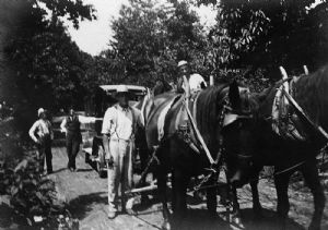A team of horses and the bookmobile near Trego