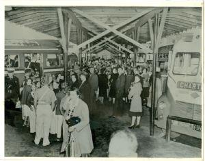 Buses at terminal