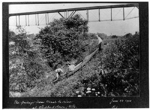 Norfolk & Western RR Bridge at Shepherdstown