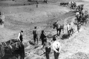 Repair Men and Mules working