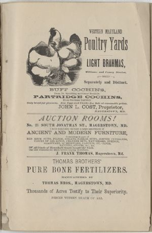 Advertisement - Western Maryland Poultry Yards